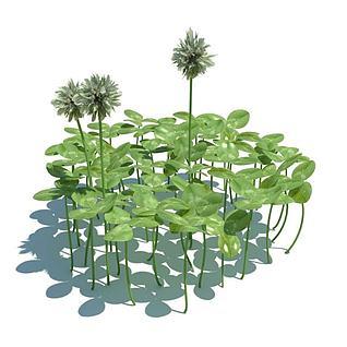 公园花草3d模型