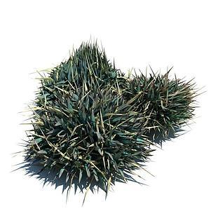 植物3d模型3d模型