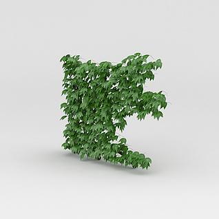爬山虎绿植3d模型3d模型