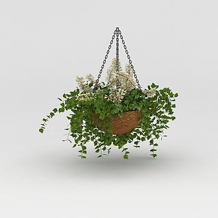 吊兰花盆3d模型3d模型