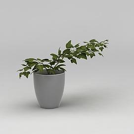 室内<font class='myIsRed'>花盆</font>绿植3d模型