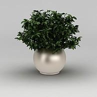 室内绿植盆栽3D模型3d模型