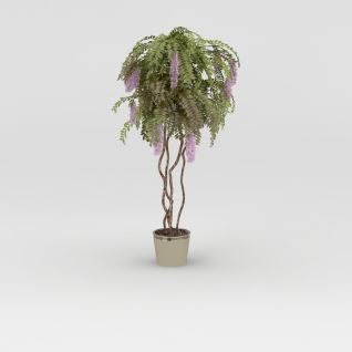 丁香树盆栽3d模型3d模型