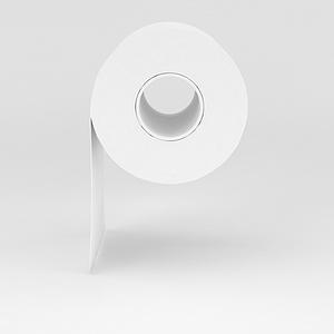 厕所卷纸模型
