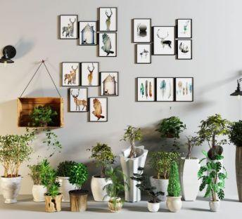照片墙绿植盆栽组合