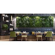 现代餐厅桌椅植物墙3D模型3d模型