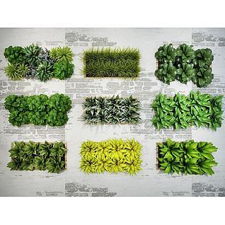 绿化植物墙组合3d模型