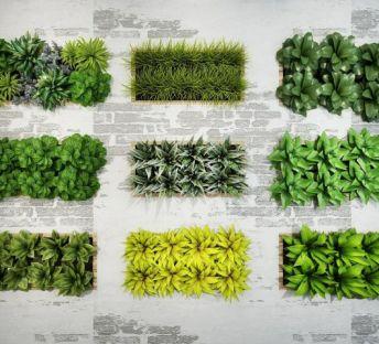 绿化植物墙组合