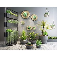 室内花架植物盆栽3D模型3d模型