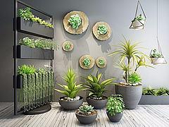 室内花架植物盆栽模型3d模型