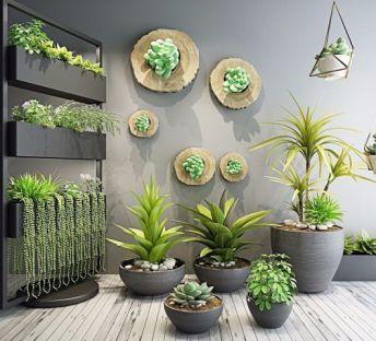 室内花架植物盆栽