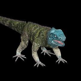 大蜥蜴模型