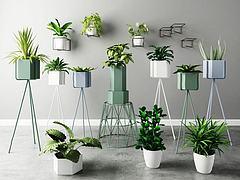 植物盆栽花架组合模型3d模型