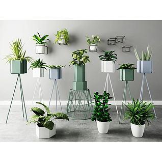 植物盆栽花架组合3d模型