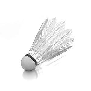 羽毛球模型