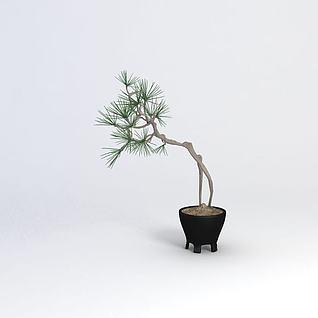 盆栽3d模型3d模型