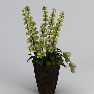 装饰<font class='myIsRed'>植物</font>3d模型