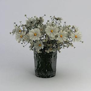 满天星雏菊花卉模型3d模型