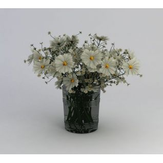 满天星雏菊花卉3d模型