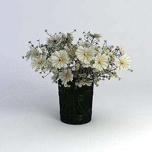 滿天星雛菊花卉模型