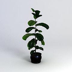 绿植模型3d模型
