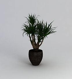 <font class='myIsRed'>植物</font>3d模型