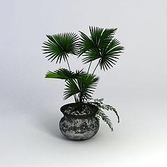 绿植盆栽模型3d模型