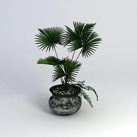 绿植盆栽3d模型