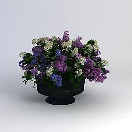 小花坛3d模型