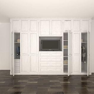 整体衣柜3d模型