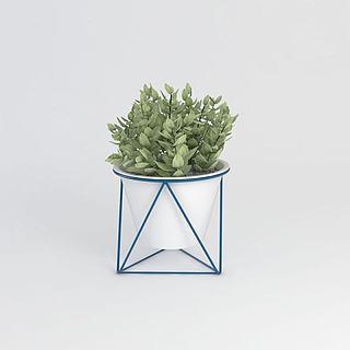 <font class='myIsRed'>植物</font>盆栽3d模型