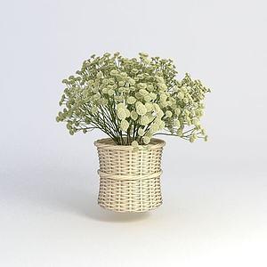 花卉模型3d模型