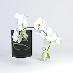 装饰花卉模型3d模型
