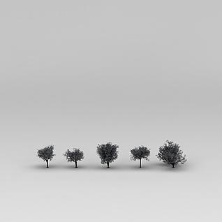 绿树3d模型