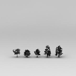 绿化树3d模型
