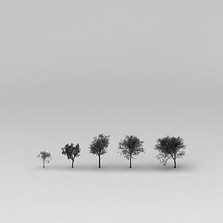 <font class='myIsRed'>树</font>3d模型