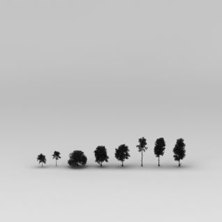 道路绿化树3d模型