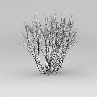 冬天的灌木3d模型