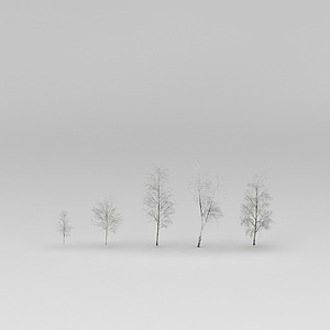 冬天的白桦树模型