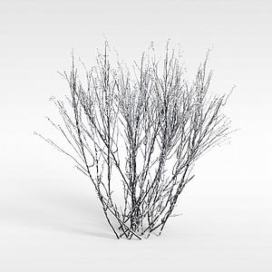 3d冬天的灌木模型