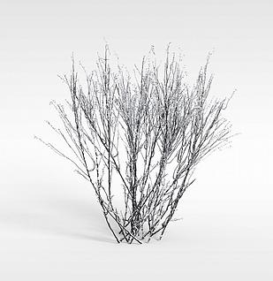 冬天的灌木模型3d模型