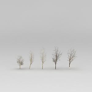 西北的树模型3d模型