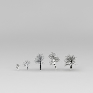 野生的树模型3d模型
