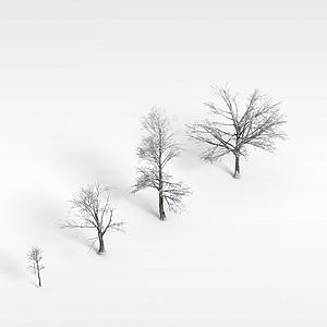 野生樹木模型3d模型