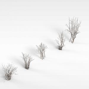 小樹模型3d模型