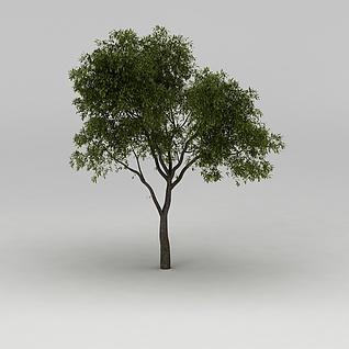绿树3d模型3d模型