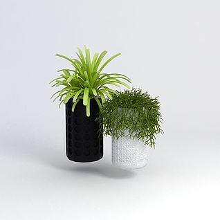 室内绿植3d模型