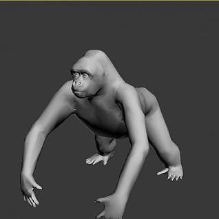 猿3d模型