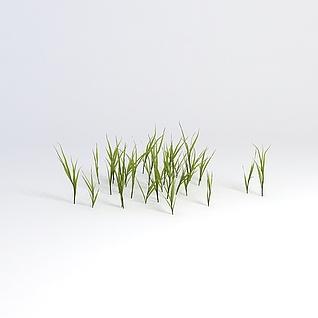 绿植草丛3d模型