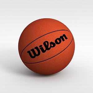 籃球模型3d模型